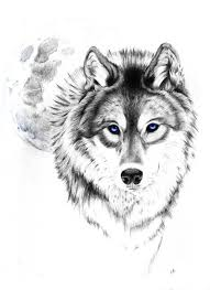 wolf this wolf and moon the though