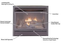 Fireplace Insert Screen by Duluth Forge Dual Fuel Ventless Fireplace Insert 26 000 Btu