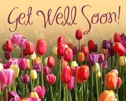 get better soon flowers pin by alie beijert on get well soon