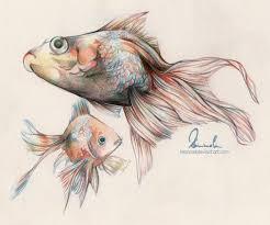 drawn fish fish swimming pencil and in color drawn fish fish