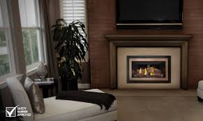 Direct Vent Fireplace Insert by Napoleon Inspiration Gdizc N Direct Vent Gas Fireplace Insert