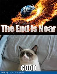 Angry Cat Good Meme - grumpy cat meme the end is near good grumpy cat meme cats