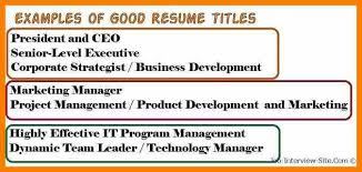 Resume Names Examples Examples Of Resume Titles Resume Ex It Consultant Resume Example