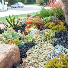 Succulent Gardens Ideas Landscape With Succulents Best Succulent Garden Ideas Around The