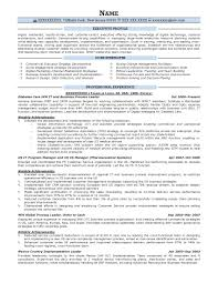 Sap Crm Resume Samples by Executive Resume Samples Resume Prime