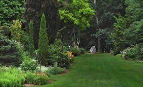 Gardens Ideas 20 Garden Ideas Inspirational Gardening Ideas Garden Design
