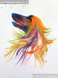 afghan hound calendar 2015 bubbles u2013 afghan hound in watercolour denise laurent fine art