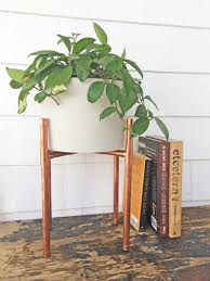 plant stand rare wooden plant standsor indoors images concept