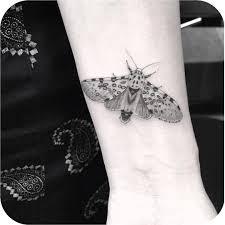 butterfly best ideas gallery
