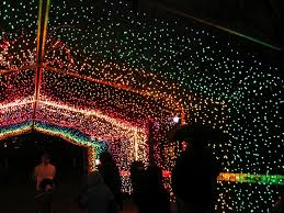 Zoo Lights by Kymberly Marciano Countdown To Christmas Childrens Zoo Lights