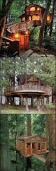 1000 ideas about kid tree houses on pinterest amazing tree
