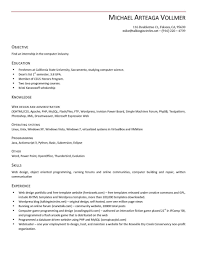 Making Resume Online by Resume Making The Perfect Cv Statement Of Career Objectives