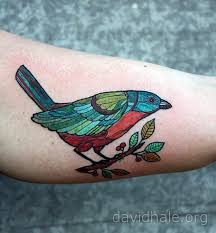 bird tattoo by david hale