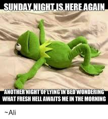 Sunday Night Meme - sunday nightishereagain another night oflyingin bed wondering what
