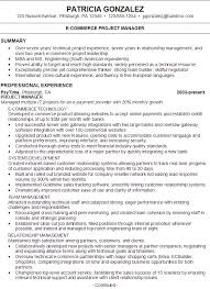 Best Resume Summary Examples by Download Example Of Resume Summary Statements
