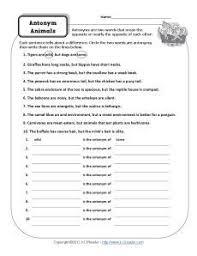 homograph worksheet identify the homographs homographs free