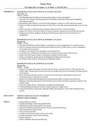financial analyst resume exle resume skills for financial analyst stunning non profit senior