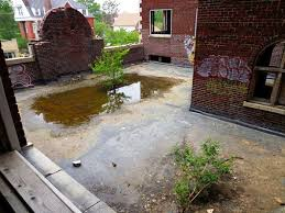 Water Ponding In Backyard Fall Ideal Time To Prepare Structures For Winter From Roof To