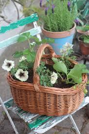 gardening strawberry baskets