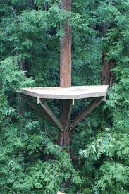 corbin s treehouse archive wedding treehouse platform