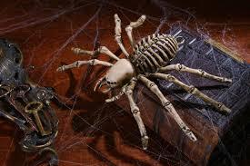 Skeleton Halloween Prop 9