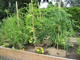 garden design garden design with organic gardening with creative