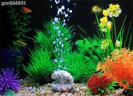 pearl and shell aquarium fish tank toys decoration ornament oxygen