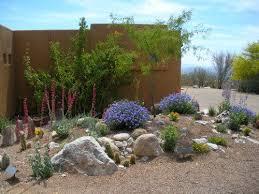 596 best desert landscaping images on pinterest desert landscape