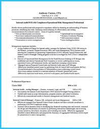 legal assistant resume objective senior internal auditor resume resume for your job application
