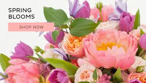 flowers shop ceres florist flower delivery by creations flowers shop and
