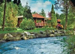 cheap weekend breaks in scotland log cabins 8 the park setting
