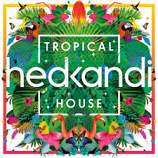 tropical photo album loving this for summer 2015 hed kandi tropical house media