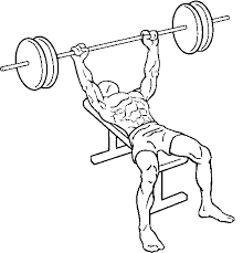 Bench Press For Beginners Strength Training For Beginners