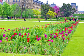 Garden Urban Tuileries Garden Urban Park In Paris Thousand Wonders