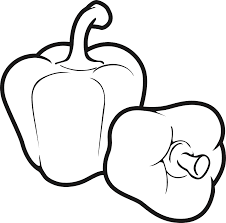 fruits u0026 vegetables clipart line drawing pencil and in color