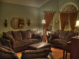 Living Room Ideas With Light Brown Sofas Brown Sofa And Curtain Interesting Curtains Green Ideas Living