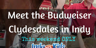 Consignment Furniture Shops In Indianapolis Meet The Famous Budweiser Clydesdales In Indy This Weekend Indy