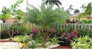 florida backyard ideas picture 21 of 21 landscape ideas in florida fresh backyards