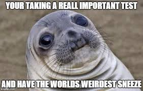 Test Taking Meme - awkward moment sealion meme imgflip