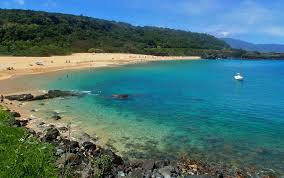 hawaii u0027s north shore is home to the best beaches in the world