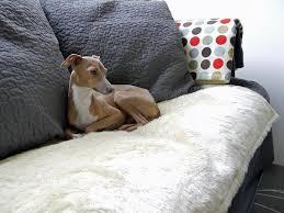 Dog Blankets For Sofa by Faux Fur Fleece Dog Comforters Dog Blanket Dog Beds And Travel