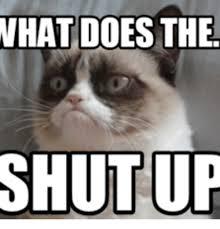 Shut Up Meme - what does the shut up grumpy cat shut up meme on me me