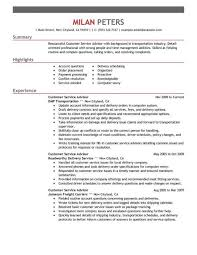 How To Do Resume Online by Curriculum Vitae Director Information Technology Resume