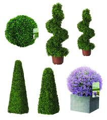 Pre Lit Topiary Topiary Ball Tree Ebay