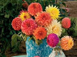 flowers arrangements dazzling dahlia flower arrangements southern living