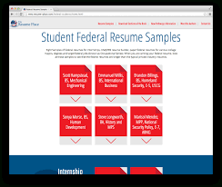 Resume Builder Usa Jobs Professional Federal Resume Writing Services Resume For Your Job