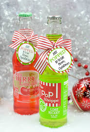 Homemade Gift Ideas by 100 Best Fun Squared Gifts Images On Pinterest Homemade Gifts