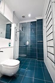 bathroom design ideas best ideas elderly bathroom design for