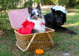 Dog Halloween Costumes 15 Coolest Homemade Dog Halloween Costume Ideas