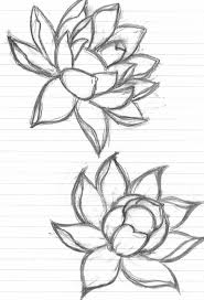 small lotus flower for photos pictures and sketches